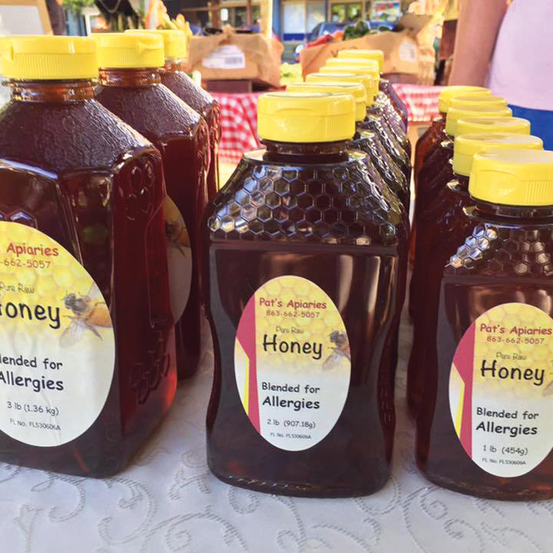 spoonful-raw-honey-your-healthy-polk-county-florida-winter-haven-lakeland-jan-betters-allen
